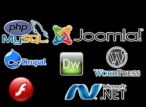 Web Development Agency, website development company in india